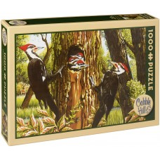Cobble Hill 1000 - A family of colorful woodpeckers