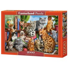 Castorland 2000 - The Cat House, Marcello Corty