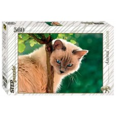 Puzzle 560 - Kitty