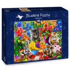Bluebird 1000 - Fun with kittens