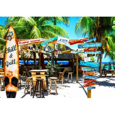 Bluebird 3000 - Williamstad Beach