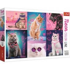 Trefl 1000 - Super cats