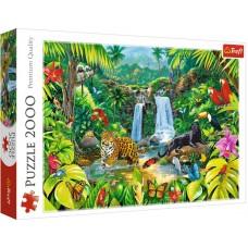 Trefl 2000 - Tropical forest