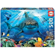 Educa 500 - The great white shark