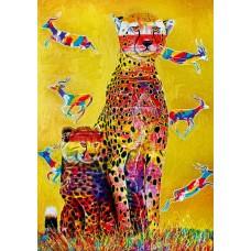 Bluebird 1000 - A look at Africa, Graham Stevenson