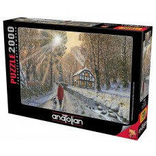 Anatolian 2000 - Winter in the woods