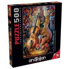 Anatolian 500 - A musical idyll